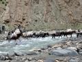 Prečenje reke SORE n.m.v.4400m HIMALAJA INDIJA