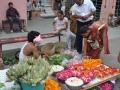 PRODAJA ROŽNIH LISTOV - DELHI Indija
