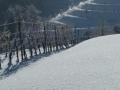 Refleksija snega