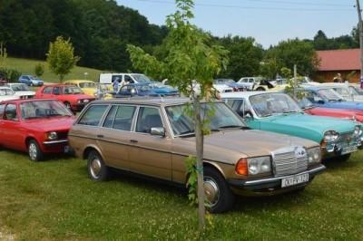 Sto sedemdeset udeležencev na 13. srečanju starodobnih vozil