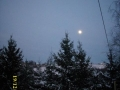 zasnežene smreke s pogledom na luno