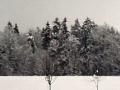 Zimska pokrajina